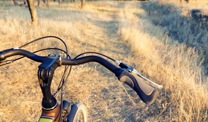 Sen Comfort: Gefederte Griffe sind natürlich keine Neuheit. Sie sind jedoch für klassische Alltagsräder eher selten im Angebot. (#01)