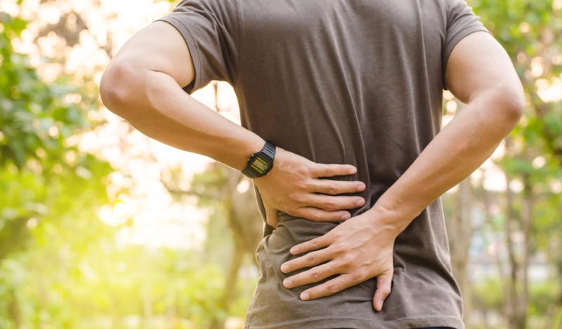 und um die eigene Rückenmuskulatur führt das Rad zu einer gewissen Entspannung, wodurch sich Schmerzen auf Dauer verringern lassen.